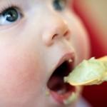 <b>Finom zöldségpürék nem csak babákn...</b>