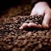 <b>Ápold a bőrödet kávéval!</b>